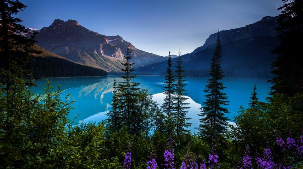 Yoho National Park - Rejser til Rocky Mountains