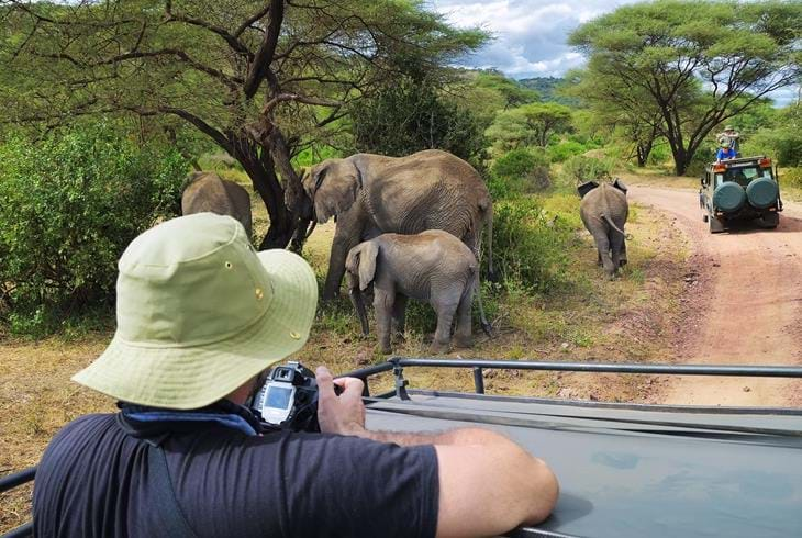 Game drive i Lake Manyara National Park